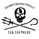 sea-01